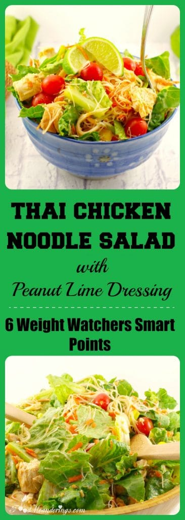 Thai Chicken Noodle Salad | weight watchers -foodmeanderings.com