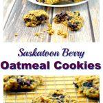 Saskatoon Berry (Juneberry) Oatmeal Cookies - foodmeanderings.com