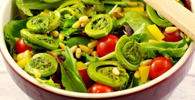 Spring Salad with Fiddleheads & Blackberry Vinaigrette