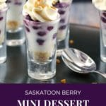 pin with text and photo of Saskatoon berry dessert on black tray