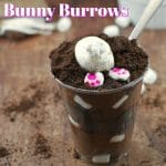 3 Ingredient S'more Easter Bunny Burrows - foodmeanderings.com