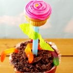 Flower cupcake edible craft