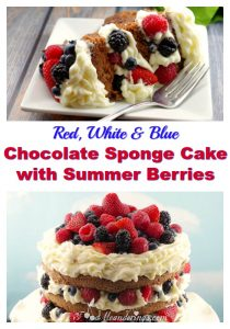 Red, White & Blue Chocolate Sponge Cake | 4th of July - foodmeanderings.com