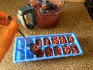 Fruit popsicle making step 5- spoon into ice cube trays (or popsicle molds)