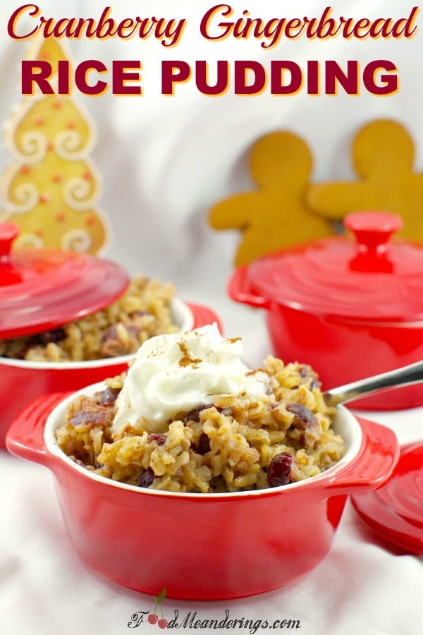 Stovetop Leftover Rice Pudding | #cranberry #gingerbread #rice #pudding