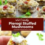 Pinterest pin with white text on a brown background in the middle and a photo of pierogi stuffed mushrooms on a baking sheet on top and the bottom photo has a pierogi stuffed mushroom being held up between finger and thumb