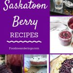 Collage of Saskatoon Berry Recipes