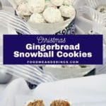 Pinterest pin with white text on blue background in the middle and 2 photos of gingerbread snowball cookies. Top photo is cookies in a blue patterned cookie bin and bottom photo is a gingerbread cookie broke in half on white surface