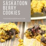 saskatoon berry oatmeal cookie split in half with more cookies on plate in background