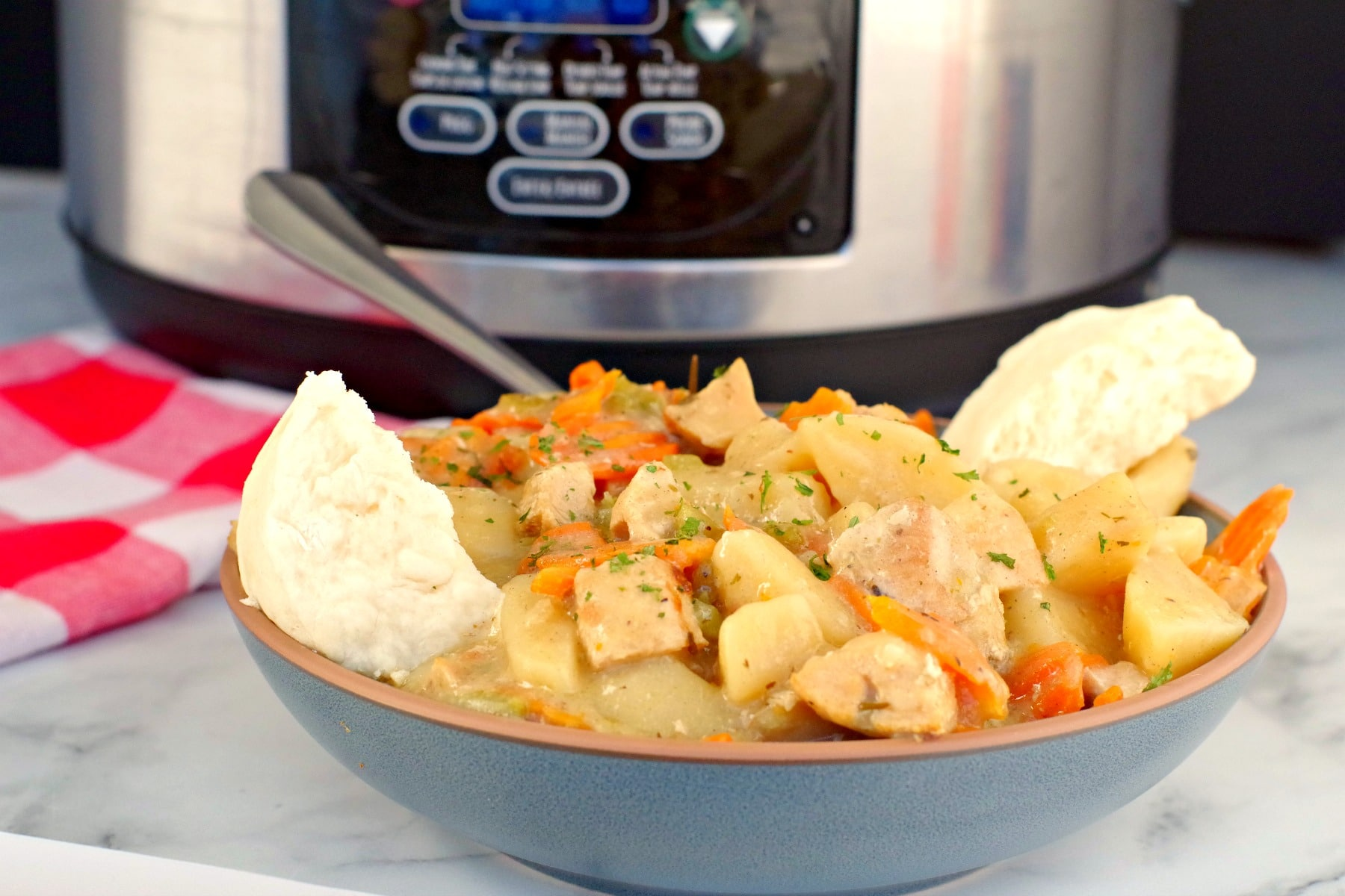 chicken stew in blue bowl with slow cooker in the background