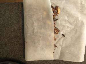 parchment folded over wood chips