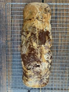 biscotti log cooling on cookie sheet