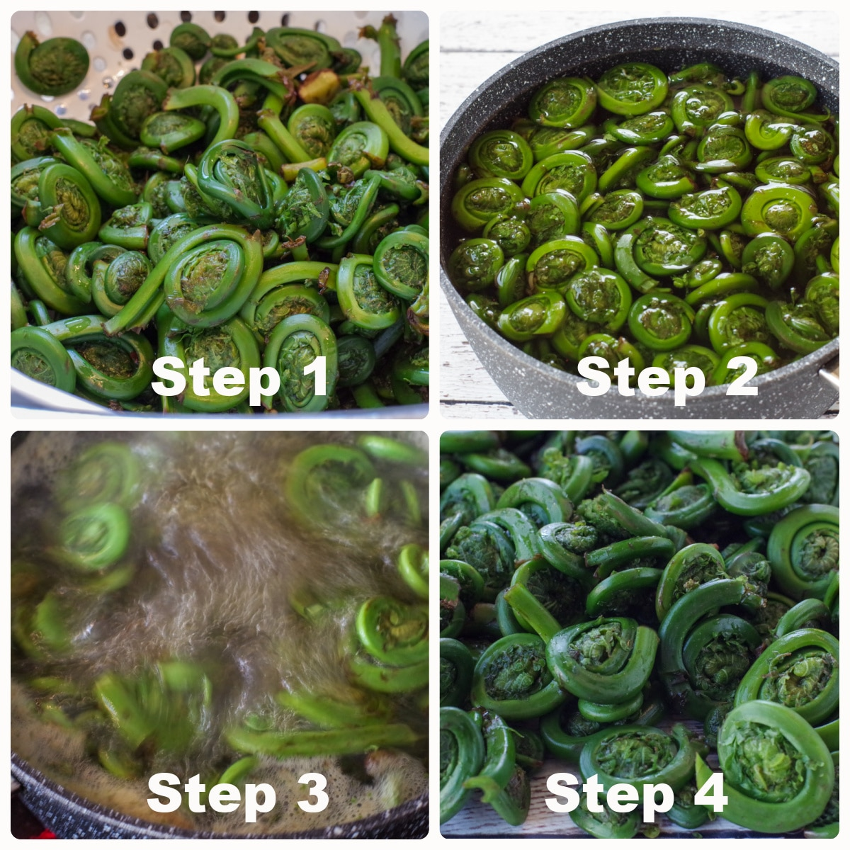 collage of 4 photos of fiddleheads being cooked